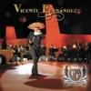 Vicente Fernández: Primera Fila (En Vivo) by Vicente Fernández album lyrics
