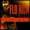 Wild Ones (Remixes) [feat. Sia] - EP album lyrics, reviews, download