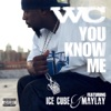 You Know Me (feat. Ice Cube & Maylay) song lyrics
