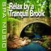 Relax By a Tranquil Brook (Music and Nature Sounds) - Single album lyrics, reviews, download