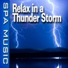 Relax In a Thunder Storm (Music and Nature Sounds) - Single album lyrics, reviews, download