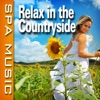 Relax In the Countryside (Music and Nature Sounds) - Single album lyrics, reviews, download