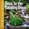 Relax By the Babbling Brook (Music and Nature Sounds) album lyrics, reviews, download