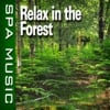 Relax In the Forest (Music and Nature Sounds) - Single album lyrics, reviews, download