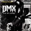 Triple Play: DMX - We In Here - Single album lyrics, reviews, download