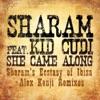 She Came Along (feat. Kid Cudi) [Remixes] album lyrics, reviews, download