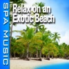Relax On an Exotic Beach (Music and Nature Sounds) - Single album lyrics, reviews, download