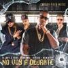 No Voy a Dejarte (feat. Farruko, Alexio & Almighty) - Single album lyrics, reviews, download