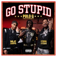 Polo G, Stunna 4 Vegas & NLE Choppa - Go Stupid Lyrics