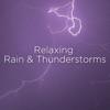 Rainforest Storm song lyrics