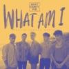 What Am I (Martin Jensen Remix) - Single album lyrics, reviews, download