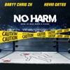 No Harm - Single album lyrics, reviews, download