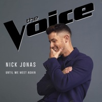 Nick Jonas - Until We Meet Again Lyrics