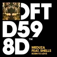 Meduza - Born To Love (feat. SHELLS) Lyrics