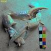 Let You Know (feat. London Grammar) [Robin Hannibal Rework] - Single album lyrics, reviews, download