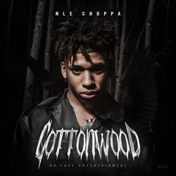 Cottonwood by NLE Choppa album songs, credits