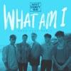 What Am I (Cash Cash Remix) - Single album lyrics, reviews, download