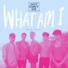 What Am I (Remixes) - EP album lyrics, reviews, download