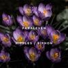 Ripples / Siphon - Single album lyrics, reviews, download