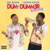 Dum and Dummer album cover