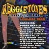 Cangri Hits - Culeo Mix by Reggaetones album lyrics