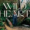 Wild Heart (Live) by Kim Walker-Smith album lyrics