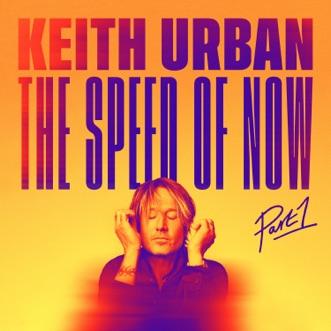 One Too Many by Keith Urban & P!nk song lyrics, reviews, ratings, credits