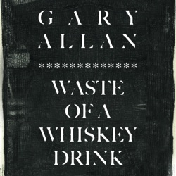 Waste of a Whiskey Drink by Gary Allan song lyrics, mp3 download