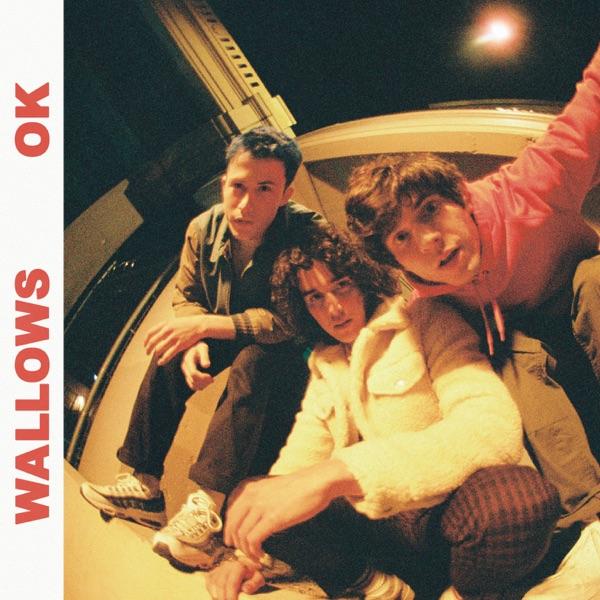 OK by Wallows song lyrics, reviews, ratings, credits