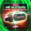Me Gustaría (feat. Dímelo Flow) - Single album lyrics, reviews, download