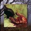 KILL YOURSELF Part II: The Black Suede Saga - Single album lyrics, reviews, download