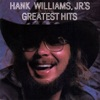 A Country Boy Can Survive by Hank Williams, Jr. song lyrics