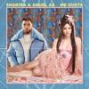 Me Gusta by Shakira & Anuel AA song lyrics