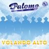 Volando Alto by Palomo album lyrics