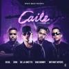 Caile (feat. Zion & De La Ghetto) - Single album lyrics, reviews, download