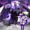 Bird Flu album lyrics, reviews, download