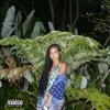 None of Your Concern (feat. Big Sean) - Single album lyrics, reviews, download
