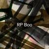 Established! by RP Boo album lyrics