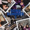 Dum N Dumbber 3 album reviews