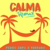 Calma (Remix) song lyrics