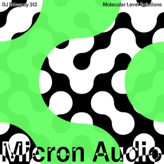 Molecular Level Solutions - EP by DJ Stingray 313 album reviews, ratings, credits