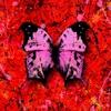 Bad Habits - Single album lyrics, reviews, download