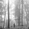 folklore album lyrics, reviews, download