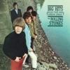 Big Hits (High Tide and Green Grass) album lyrics, reviews, download