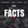 Facts (Remix) [feat. DJ Khaled, Busta Rhymes & Fat Joe] - Single album lyrics, reviews, download