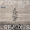 Promises (Remixes) album lyrics, reviews, download