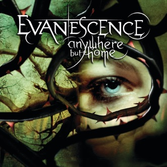 Bring Me To Life (Live from Le Zénith, France 2004) by Evanescence song lyrics, reviews, ratings, credits