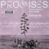 Promises (Extended Mix) - Single album lyrics, reviews, download