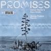 Promises (Sonny Fodera Extended Remix) - Single album lyrics, reviews, download