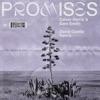 Promises (David Guetta Extended Remix) - Single album lyrics, reviews, download